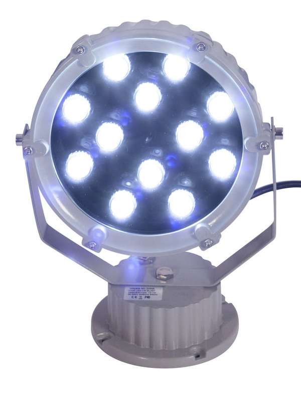 Blast Accent LED Flashing Light